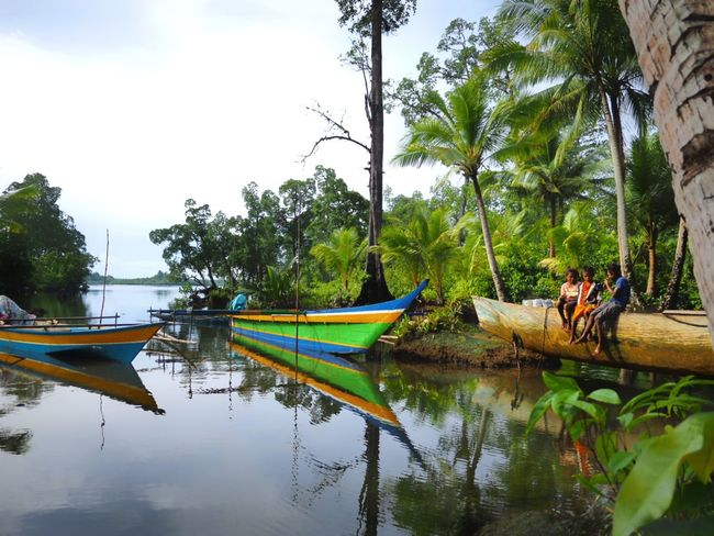 lonely land, Biak Supiori Tree Water Nautical Vessel Transportation Outdoors An Eye For Travel