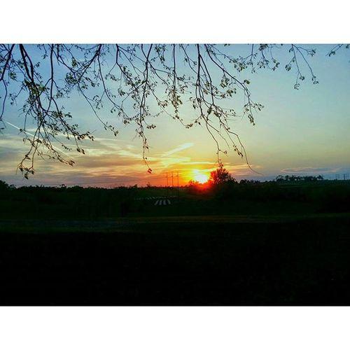 Kansas sunset....... Ks_pride Kansassunset Atchison Sunrise_sunsets_aroundworld Sunset Kansasnature Kansasphotographer Kansasphotos Wow_america_landscape Sun