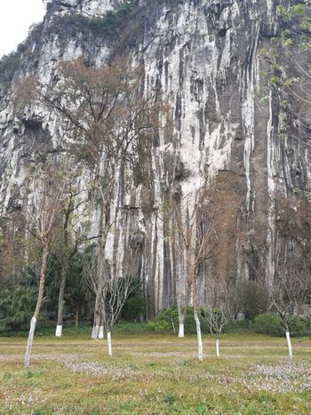Cliff on a cold raining fall Cliff Day Outdoors No People Sport Soccer Field Nature Tree