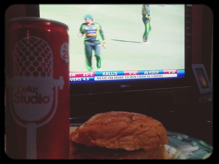 Cricket Watching Cricket Party Enjoying Life