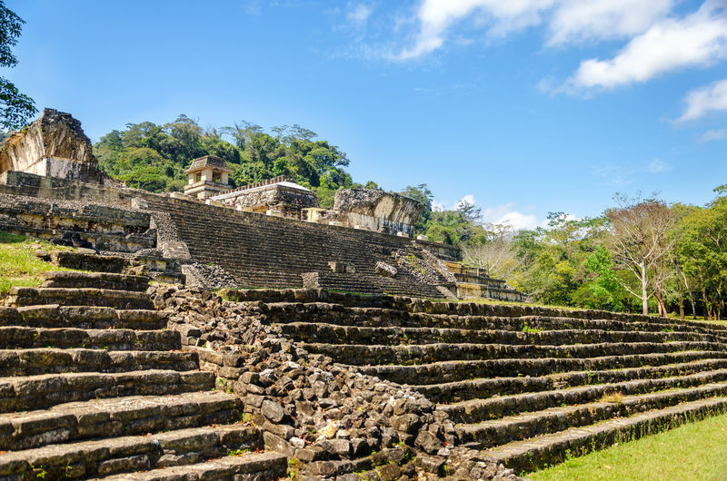 Steps leading up to the palace of the ancient Mayan city of Palenque Ancient Archeology Building Forest Heritage History Jungle Maya Mayan Mexico Old Palenque Palenque México Palenque, Chiapas Precolumbian Pyramid Religion Ruin Stairs Stairway Stone Temple Unesco UNESCO World Heritage Site View