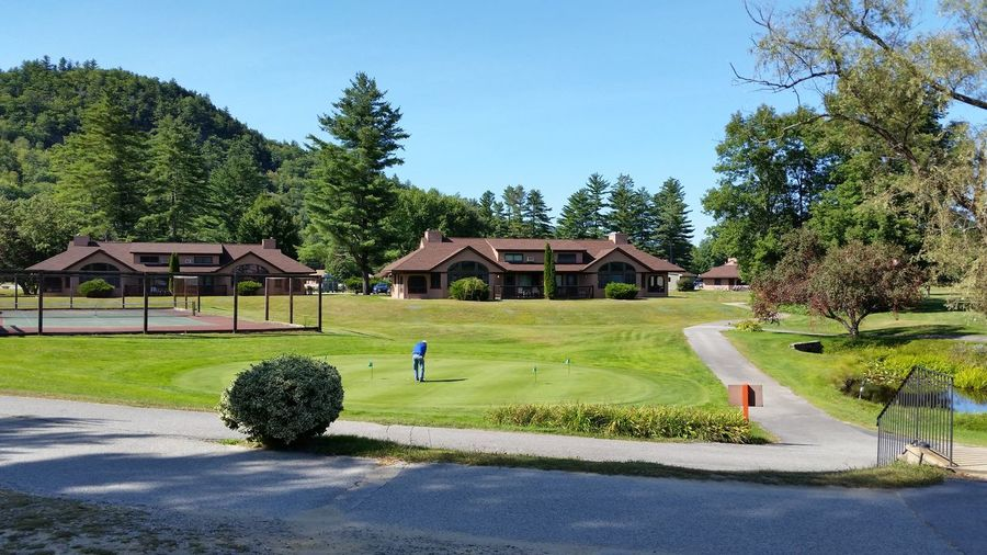 Tree Day Outdoors Sky Grass New Hampshire Golf Course Golf Ball Green - Golf Course Leisure Activity Sizing Things Up Beautiful Day New Hampshire, USA New England  Tranquility Peaceful Tee Time Putting Green Tennis Court