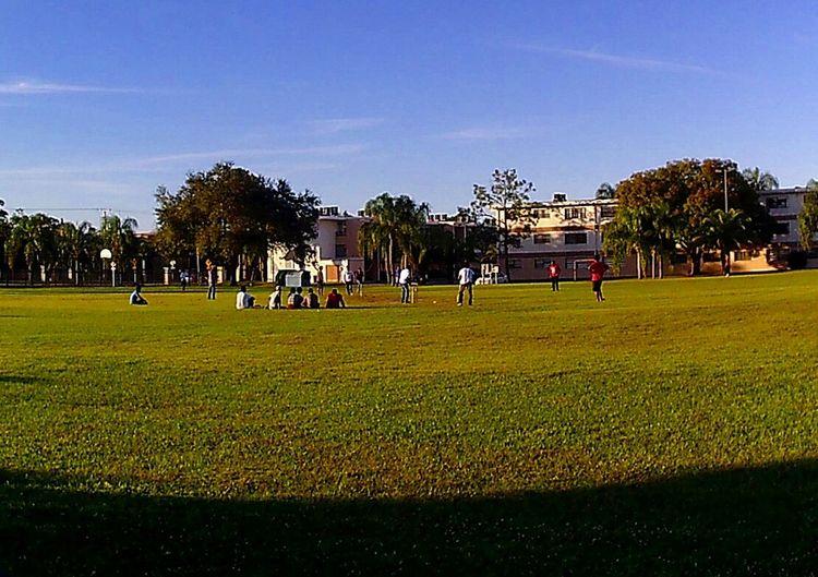 Cricket in the USA! International college kids having fun. People Photography Everyday Joy