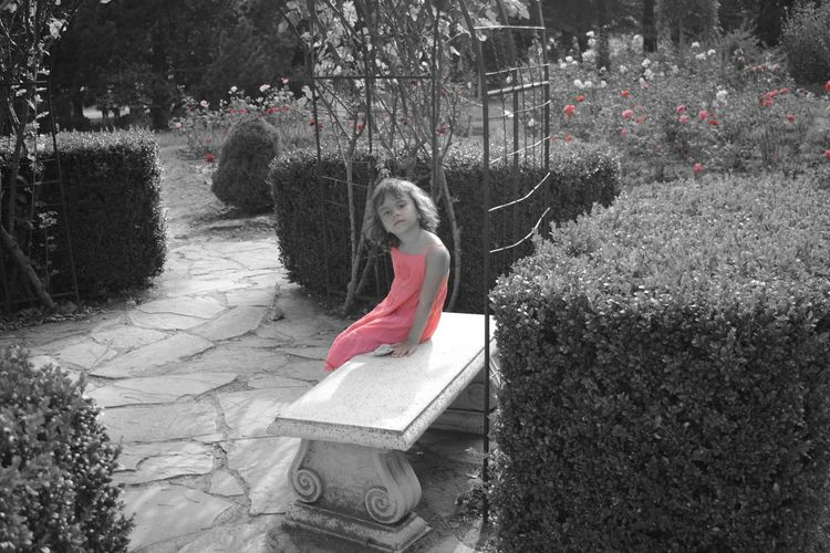 Rosarium Selective Color Pink Pink Roses Childhood One Girl Only Portrait Full Length People Girls Children Only Botanical Garden Elementary Age Outdoors Retro View