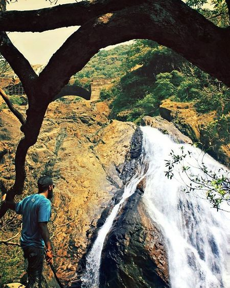 I gotta believe it's worth it ! Waterfall Tree ThisView Travelling Serenity Naturelover Traveler Exploringgoa Ahd Goa Mytravelgram