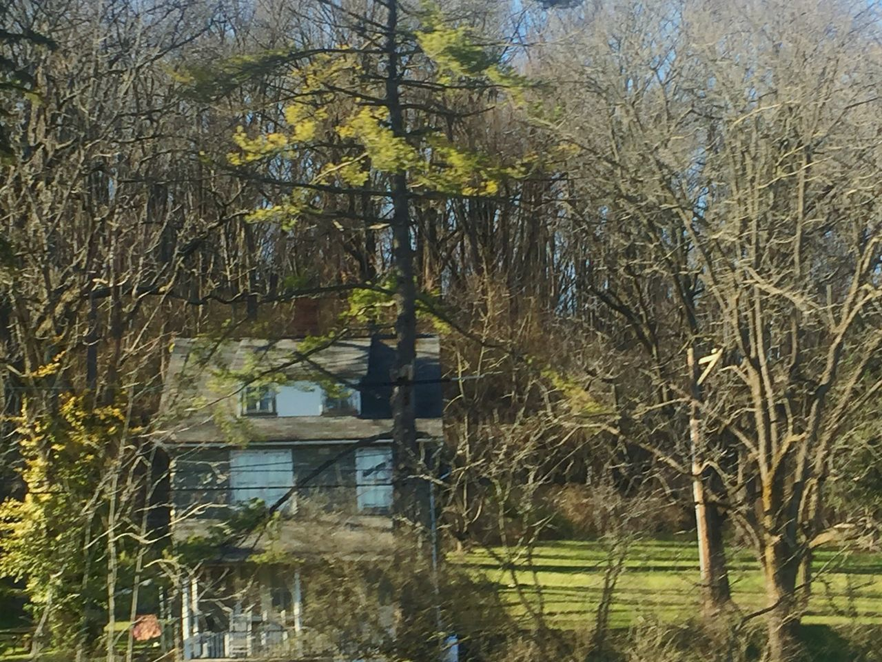 tree, building exterior, no people, architecture, outdoors, bare tree, day, built structure, tranquility, tranquil scene, nature, branch, water, beauty in nature, sky