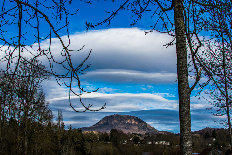 Auvergne Bare Tree Beauty In Nature Blue Branch Ceyssat Cloud - Sky Day Nature No People Outdoors Puy De Dôme Scenics Sky Tranquil Scene Tranquility Tree