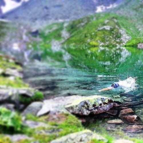 Kan berätta för er att det är otroligt uppfriskande, på snudd till dödligt, att bada i vatten som precis når upp till 10 grader, spreciellt på 2000 meters höjd. Mest så at ni vet Hikests Tävlingomåretskatalogbild Fylliggump Uppfriskande herrobericebitte coldasice