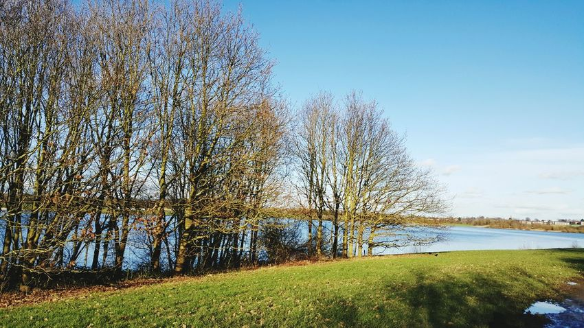 Wakefield Park Pugneys Pugneys Country Park Wakefield Sun Water Branch