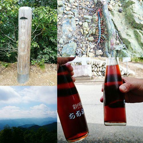 飯能トレイル楽しかった~🎵(*≧∀≦*)👍 Enjoying Life Holiday Memories Running Mountain View Mountain Japan Trail Running Good Memory