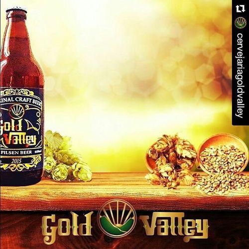 Repost @cervejariagoldvalley with @repostapp ・・・ Cervejariagoldvalley Cervejaartesanal GoldValley CervejaGoldValley Tachegando Craftbeer Brew