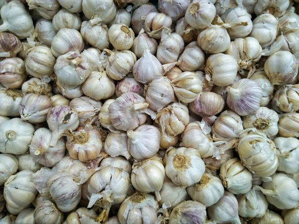 garlics Vampire Ghost Hunting Garlic Wall Wallpaper Full Frame Day Abundance Large Group Of Objects No People Outdoors
