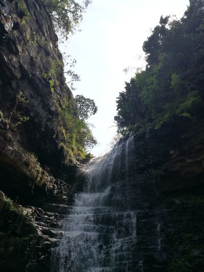 Kranskloof Gorge Kwazulu Natal Durban, Outer West Tree Water Beauty In Nature Nature Waterfall Growth Scenics Sky Outdoors The Way Forward Non-urban Scene Day Tranquil Scene Tranquility Rocky Mountains Waterfront Mountain Empty Road Rock Formation Green Color