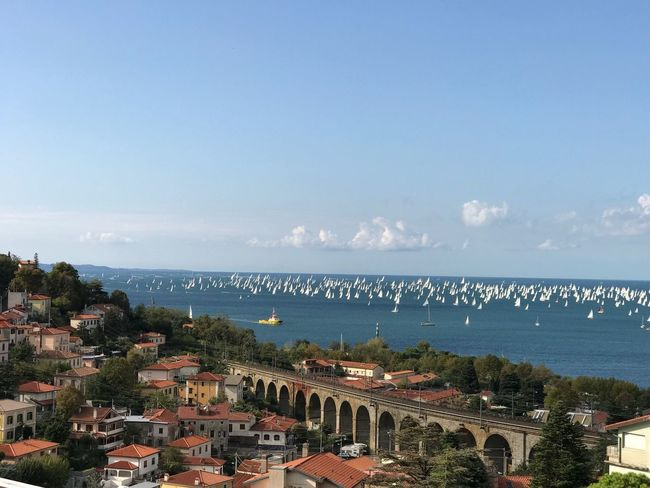Sea Water Horizon Over Water Architecture Built Structure Building Exterior Sky High Angle View Day Beauty In Nature No People Outdoors Nature Scenics Blue Cityscape City Tree Trieste Barcolana Barcolana49 Regata Regatta Sailboat Sail Lost In The Landscape