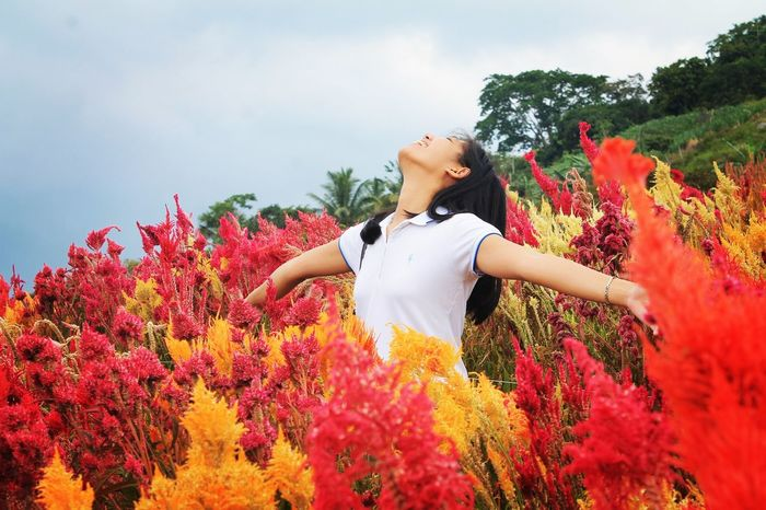 My Year My View Flower One Girl Only PeopleChild Tree Nature Red One Person Beauty In Nature Beauty Cebu Philippines Fresh Love Happiness Color Woman Who Inspire You Outdoors Day Plant Open Arms To The World Open Rear View Children Only