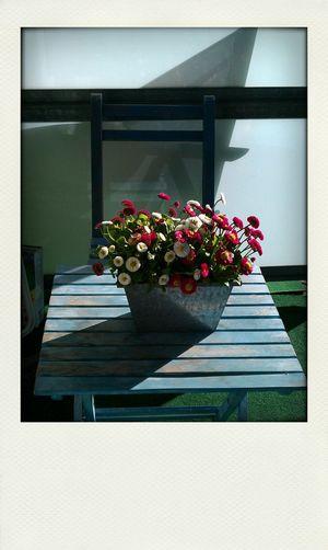 Sun Light Urbanromantic Deko Enjoy The Silence