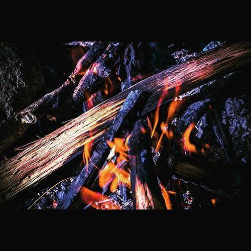 焚き火 Bonfire 直火 Camping Outdoor キャンプ