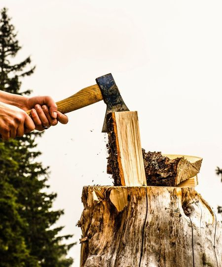 Close-up of man hand holding wood against sky