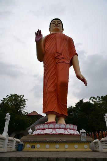 Sri Lanka D7200 Nikon SIGMA18_300mm Canoma Photography Ranawana Royal Temple Pilimathalawa Buddha Buddhism Buddhist Temple Buddha Statue Buddha Temple First Eyeem Photo