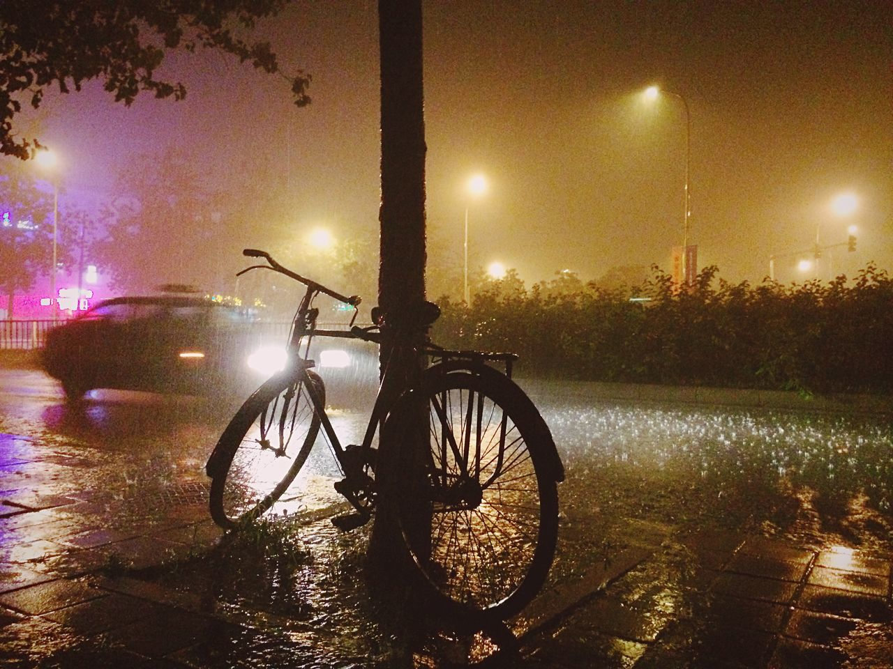 Bicycle parked by tree at night during rainy season