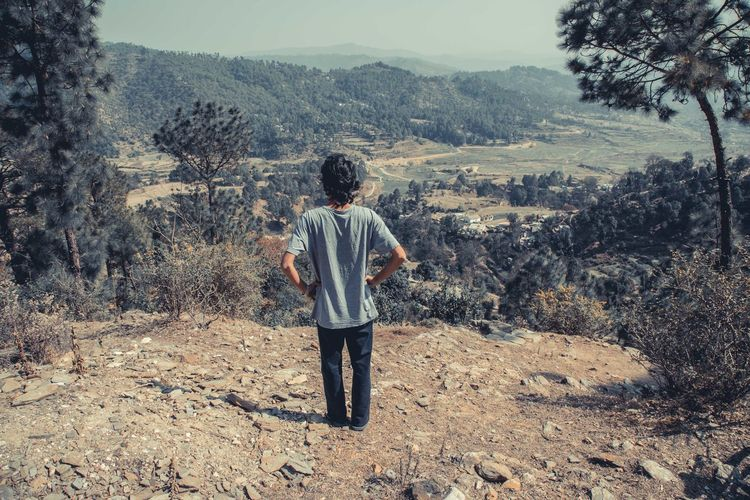 Rear view of man looking at landscape