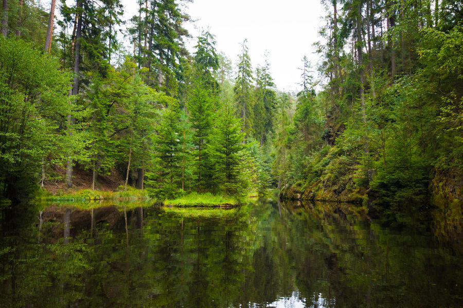 Adršpach Adršpachské Skály Nature Pond Reflection Lake Mountain Rock - Object