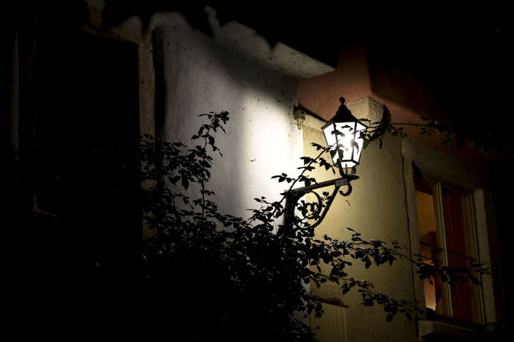 Architecture Building Built Structure No People Wall - Building Feature Window House Plant Lighting Equipment Night Nature Illuminated Dark Low Angle View Electric Lamp City Capture Tomorrow