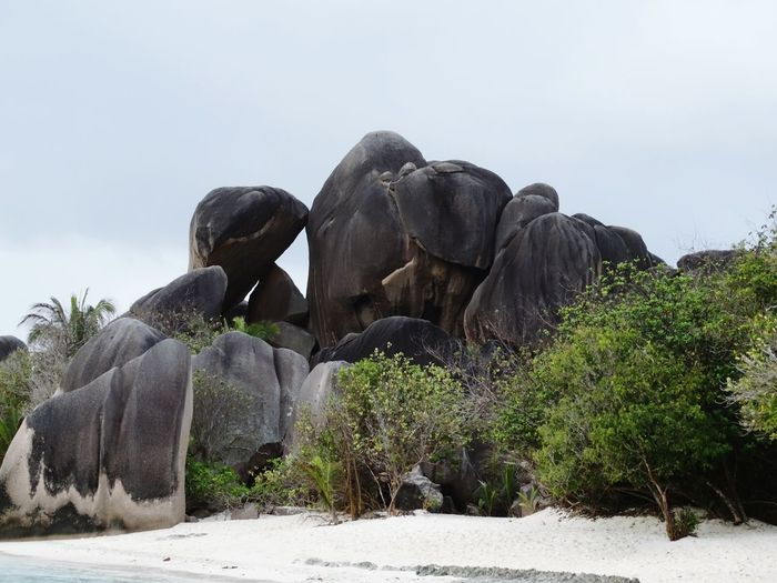 Rock - Object Travel Destinations Cloud - Sky Outdoors Nature Day No People Tree Health Spa Sky Beauty In Nature Travel Destnations Tropical Paradise Seychelles Islands Exotic Island Rock Formations Seychelles La Digue Rocks And Sand Rocks And Sea Anse Source D'argent Neighborhood Map