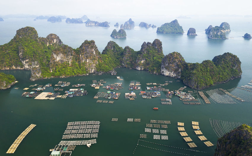 High angle view of boats in bay