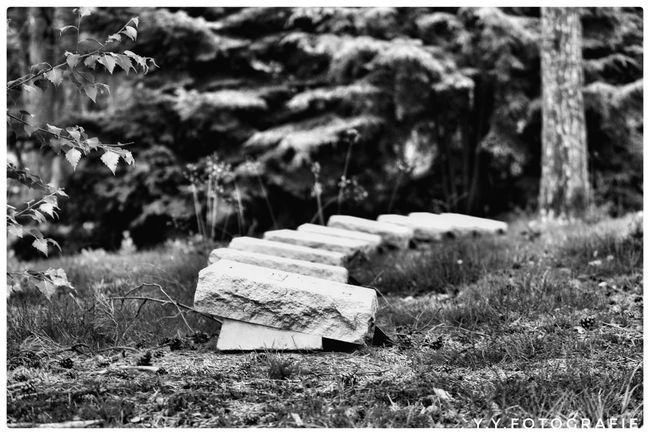 Rest In Peace ❤ History War Victims Nature Photography Justgoshoot Outside Blackandwhite EyeEmNewHere EyeEm Best Shots Resting