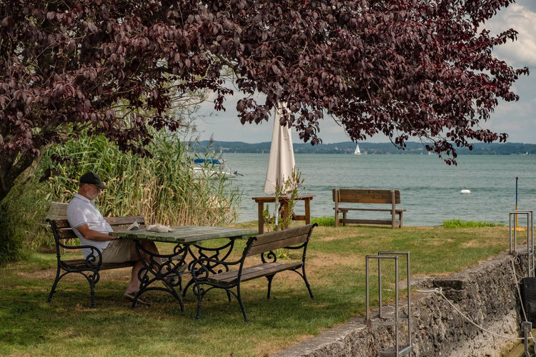 Man sitting on table by sea against trees