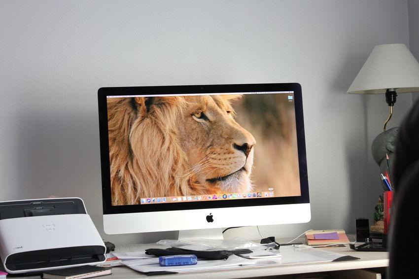 mac setup Computer Monitor Computer Technology Indoors  Flat Screen No People Day