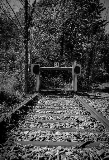 Prellbock Rail Transportation Railroad Track Railroad Station Railways Railways_of_our_world Schienen Prellbock Streetshot Blackandwhite Transport Railway Station Traveling Travel Train Leaves Public Transportation Railroad Station Platform Railway Track