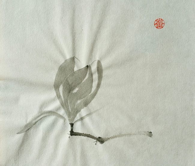 Nicht besonders hübsch. Aber ich habe es selbst gemalt. 😀 Hoffe es gefällt... Japanese Drawing Magnolia_Blossom Relaxing Sumi-e