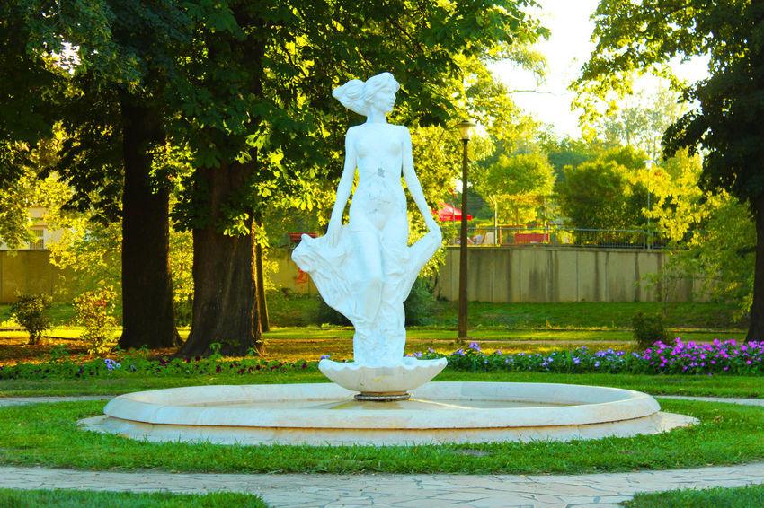 Hungary Statue Statue Of Liberty Beauty In Nature Day Flower Girl Grass Growth Győr Human Representation Male Likeness Nature No People Outdoors Park - Man Made Space Sculpture Statue Tree Water