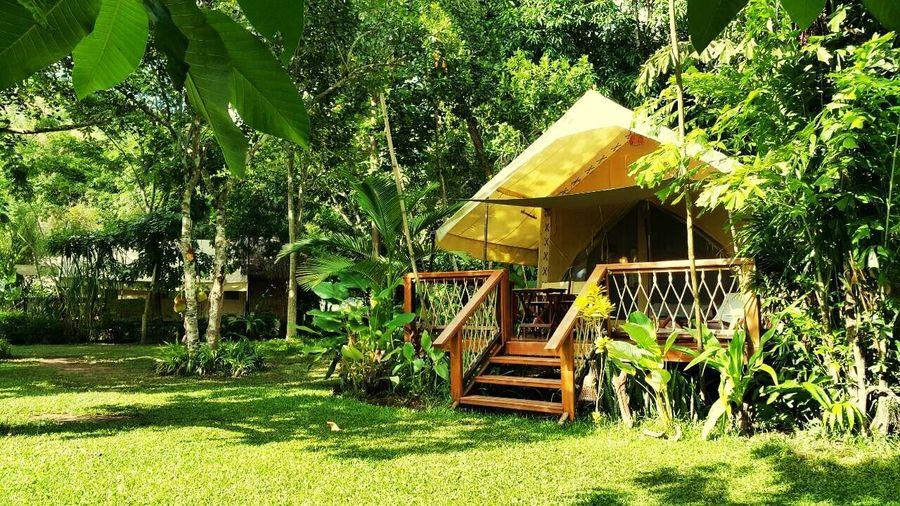 Safari Tented 🌴🌾🍃 Safari Tented HintokRiverCamp Holiday Happy Chilling Relaxing Time