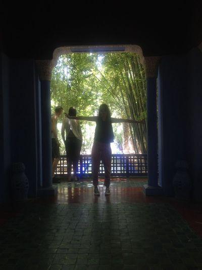 Darkness Jardinsmajorelle Marrakech Morocco Yves Saint Laurent