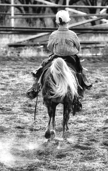 West Texas Horselovers Horselove Horse Riding Bronte Texas Photoart Fine Art Photography Eye4photography  Horse Nikonphotography This Week On Eyeem Horses Rodeo Scene Rodeo! Rodeo Cowboy Up Rodeo Time Cowboys Cowboy Ponies Pony Black And White Collection! Blackandwhite #bnw #monochrome #instablackandwhite #monoart #insta_bw #bnw_society #bw_lover #bw_photooftheday #bw #bw_society #bw_crew #bwwednesday #insta_pick_bw #bwstyles_gf #irox_bw #igersbnw #bwstyleoftheday #monotone #monochromatic#noir #fineart_ph Black & White Playday