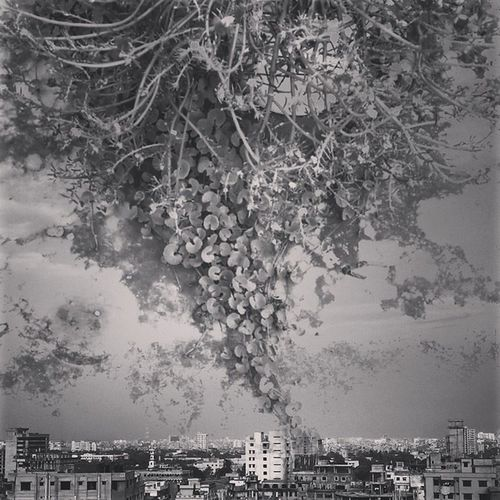 Dhakagraam Dhakagram Instadhaka Doubleexposure Cityscape Architecture Nature Bw Bnw Everydaydhaka Everydaybangladesh Instamood Instagood Instago Summer Kazi Tahsin Agaz Apurbo Dhaka Bangladesh