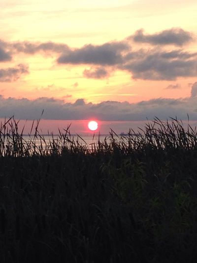 Sunrise Sunset sun Sunlight Sunshine
