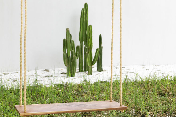 Rope wooden swing at the playground summer. Green Color Plant Growth Nature No People Field Grass Day Land Freshness Focus On Foreground Outdoors Food And Drink Vegetable Food Close-up Agriculture Beauty In Nature Group Of Objects Rope Swing Playground Tree Cactus Tropical Stick Hanging Shape Long Vintage Beautiful Hipster Minimal