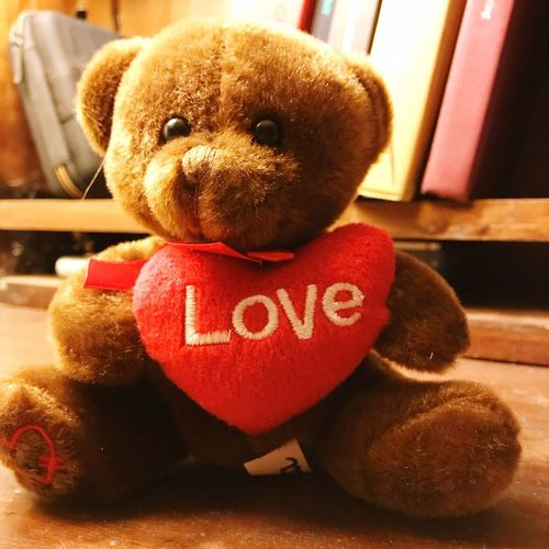 Red Week. There's a bear in there Text Western Script Indoors  Love Brown Stuffed Toy Close-up No People Red Teddy Bear Day Stuffed