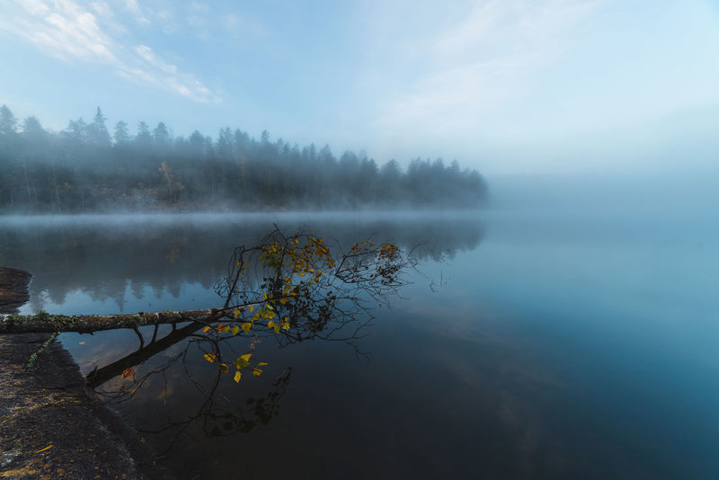Autumn Autumn🍁🍁🍁 Beauty In Nature Calm D750 Finland Foggy Foggy Morning Lake Majestic Nature Nature_collection Naturelovers Nikon Non-urban Scene Nuuksio Reflection Samyang Scandinavia Scenics Suomi Tranquil Scene Tranquility Water Waterfront