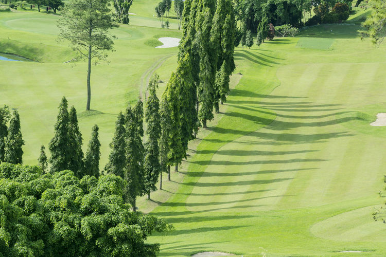 Green Color Landscape Tree Plant Scenics - Nature Beauty In Nature Environment Tranquil Scene Tranquility Growth No People Land Day Rural Scene Field Agriculture Nature Non-urban Scene Grass High Angle View Outdoors Rolling Landscape Bandung Golf Course Aerial View