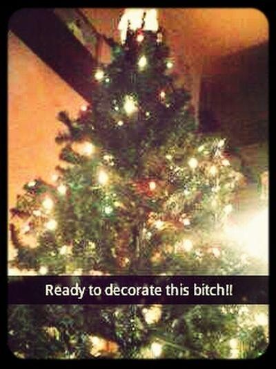 TreePorn :) TreePorn