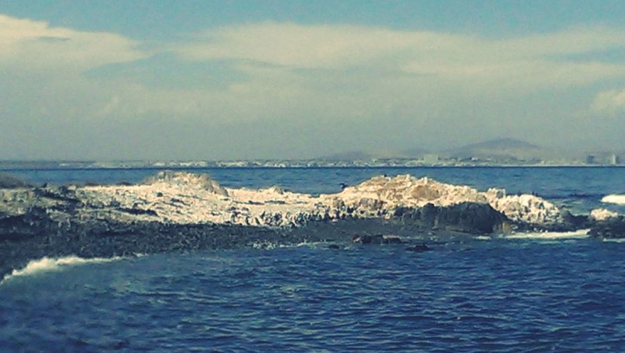 The blue's of Robben Island Penguins Nature Lover Ocean Prison View Robben Island Nelson Mandela Mountain Range