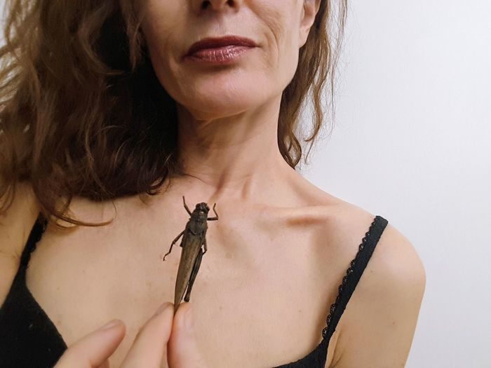 grasshopper on skin Grasshopper Grasshopper Insect Nature Insect Insect Photography Personal Perspective Human Lips Young Women Shirtless Studio Shot Headshot Portrait Beauty Front View Beautiful Woman Close-up Skin Body Part