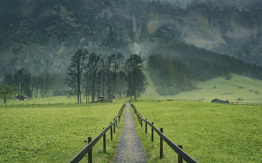 Scenic View Of Narrow Pathway In Field