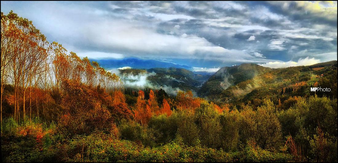 EyeEm Best Shots - Landscape Landscape_Collection Autumn Colors Autumn Collection
