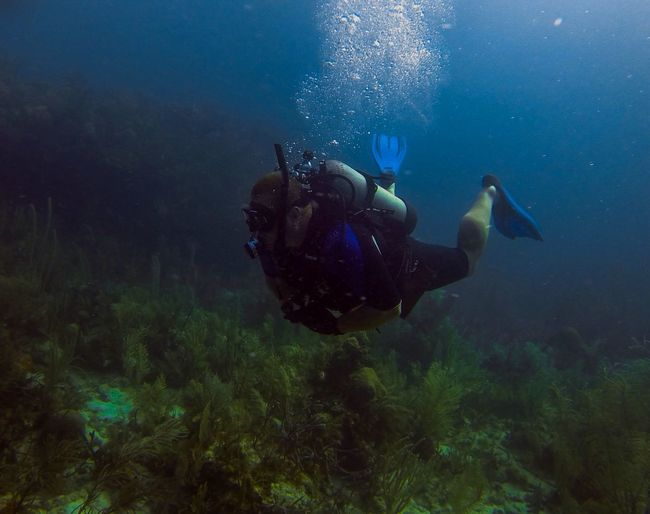 Florida Chill Underwater Relaxing